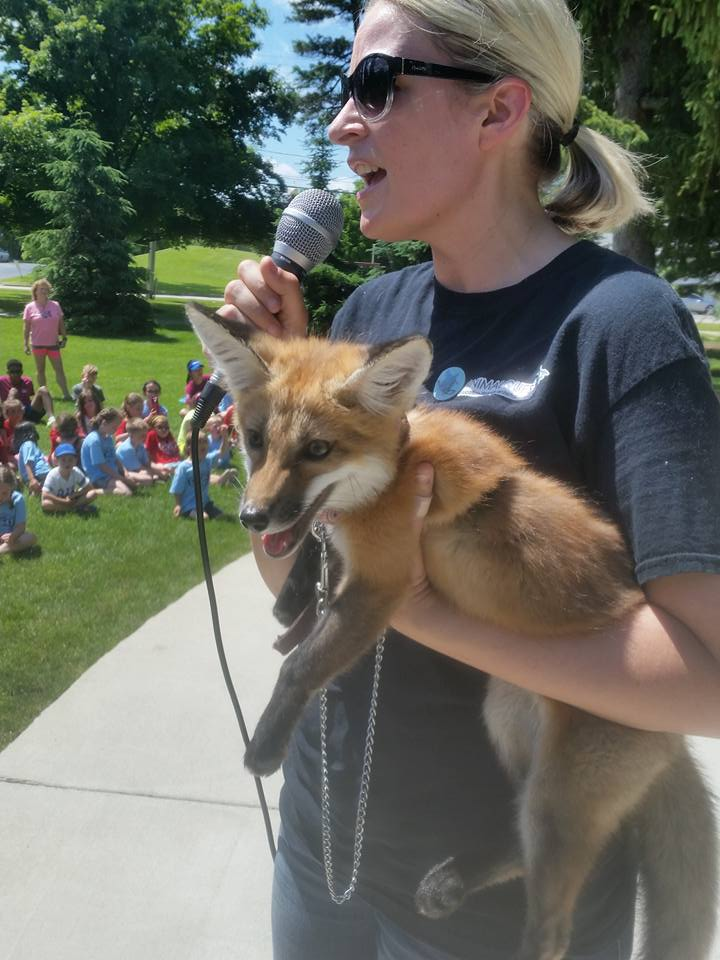 Woman holding a fox