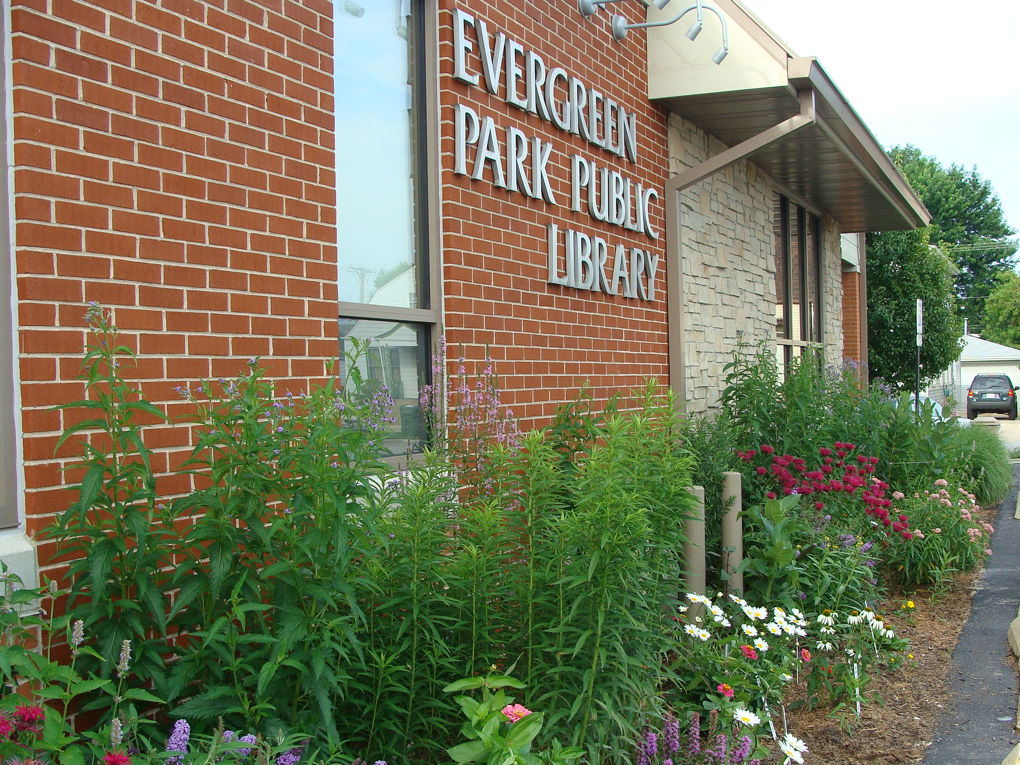 Evergreen Park Library Butterfly Garden