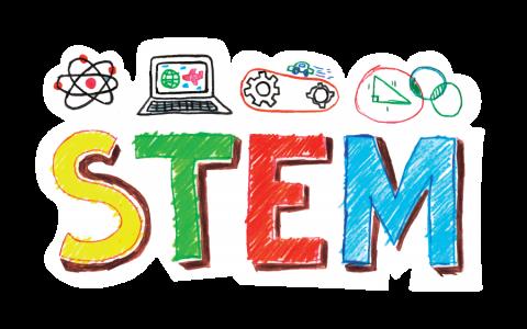 Fall into STEM